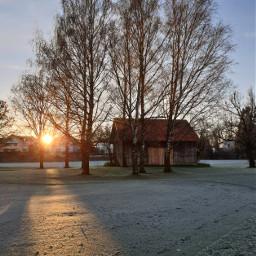 freetoedit remixit remixme landscape nature autumn fall sunrise munich morning cold