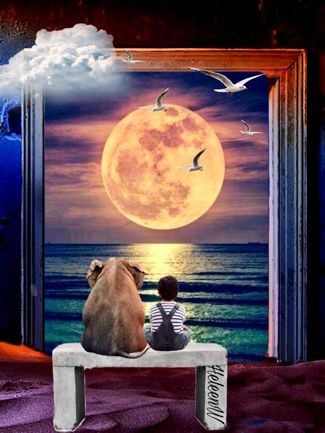 #rcthankful #friend #love #friendsforever #friends #friendship #picsartfriends #fantasy #imagination #myedit #moon #night #freetoedit @roxannegraziadei-fatta