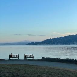 freetoedit tiburon waterfront bench