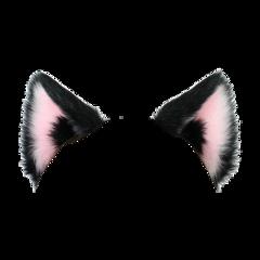 catears cat ears cute soft aesthetic vintage aestheticvintage vintageaesthetic pink goth adorable interesting aesthetics sticker stickers catearssticker kpop straykids skz nct bts twice blackpink freetoedit