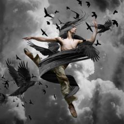 raven ravens blackbirds dark darkart gothic freetoedit srcpaintribbons paintribbons