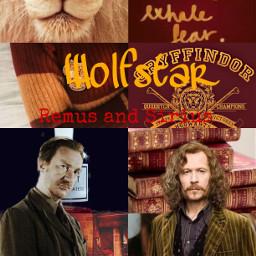 hpforever harrypotter siriusblack remuslupin wolfstar freetoedit picsart