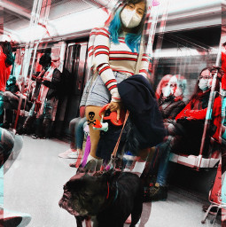 metrostation art photography pets freetoedit