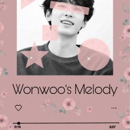 pinkaesthetic wonwoo svt seventeen seventeenwonwoo freetoedit