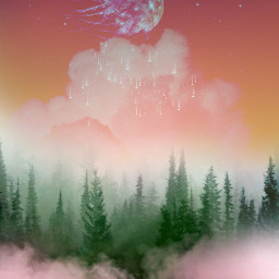 background forest sky skybackground clouds fog misty magical stars moon christmastree freetoedit