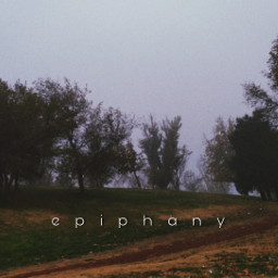 epiphany folklore forest fog foggy cloudy trees freetoedit
