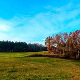 freetoedit meadow field landscape myphoto nature