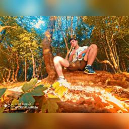 picsart lightroom effect edits photooftheday forest instagramers freetoedit