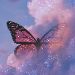 butterfly lovebutterfly thecloudsinthesky freetoedit