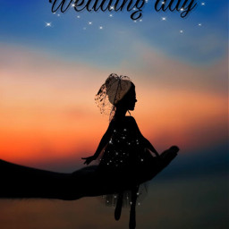 wedding weddingday weddingdress dress glitter bride shadow shadowwoman womanshadow black woman challenge freetoedit ircfallingleaf fallingleaf