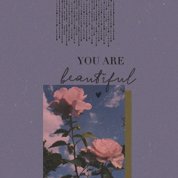 aesthetic aestheticwallpaper flower rose noise glitter tears wallpaper roses youarebeautiful nature purple pink rosepetals picoftheday inspiration heart stayinspired vintage beautiful papicks simple details dust pretty freetoedit