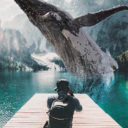 クジラ whale ファンタジー fantasy picsart picsartedit madewithpicsart freetoedit