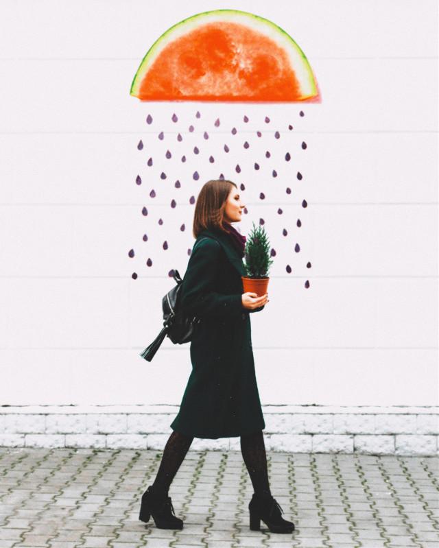 #freetoedit #watermelon #watermelons #rain #watermelonseed #seeds #cute