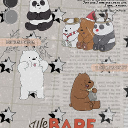 webearbears edit międzynamimisiami aesthetic bears cute panda polar bear we best friend brother brothers freetoedit