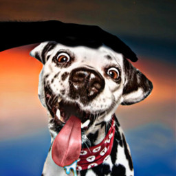 dog pet petting happy freetoedit ircfallingleaf fallingleaf