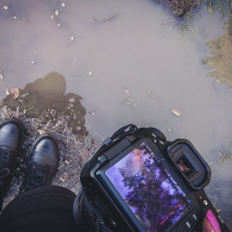 forest puddle water mud