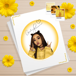 freetoedit arianagrande positions ariana grande fan yellow neon yellowneon flowers flower yellowaesthetic yellowflower💛 yellowflower yellow💛 polaroid