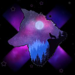 galaxy gfx iphone samsung nokia lg phone freewallpaper wallpaper galaxywallpaper galaxybackground freebackground wolf stars moons x black freetoedit
