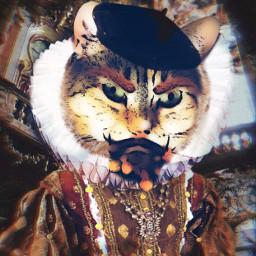 elizabethan cat princeofcats beard ruff fcmybesteditsof2020 freetoedit