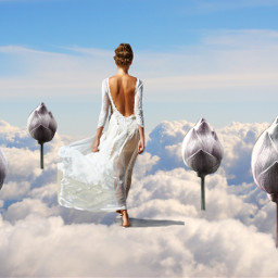 freetoedit ecintheclouds intheclouds
