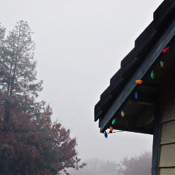 freetoedit fog christmas holiday