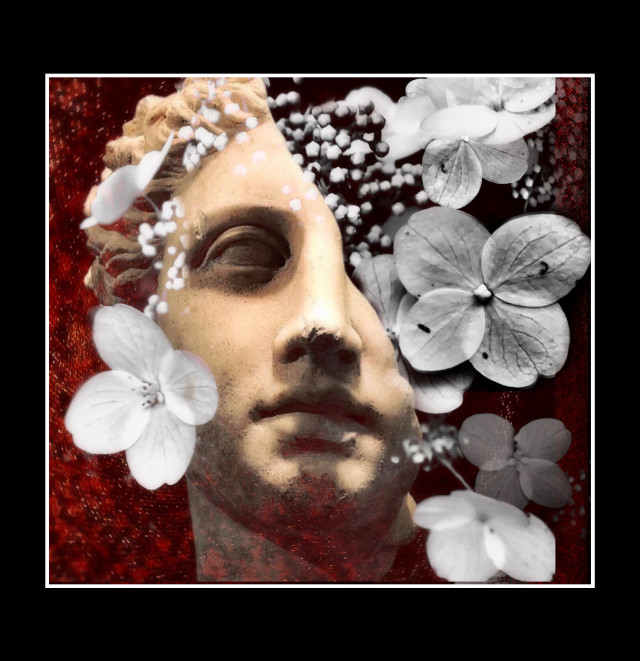#myedit #heypicsart #photography #art #flowers #statue #myphoto #nature  #blackandwhite #border #makeawesome #papicks #becreative #fx #doubleexposure #freetoedit #picsart  Shoutout to @merlinsartwork for always giving me a great starting place.  If you need some inspiration or a good starting point, then you really need to check out his great gallery.