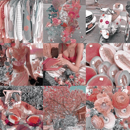 aesthetic pinkchampagne gonesoul pink red white moodboard mb aries aquarius leo sagittarius pisces scorpio taurus