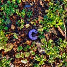 letter c lookdown ground fattaleffect freetoedit