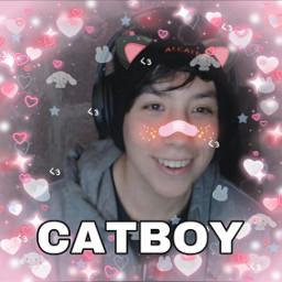 quackityhq catboy dreamteam freetoedit