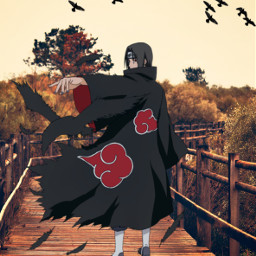 naruto narutishippuden itachi uchiha crow view freetoedit