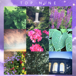 topnine2020 topnine heypicsart picsart 2020sucks 2020 nature photography lilwishesphotography siennadoma4 myphotography happynewyear 2021 freetoedit