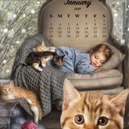 girl sleeping cats calendar january srcjanuarycalendar freetoedit