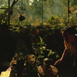 mobilephotography photography garden philippines zamboanga freetoedit