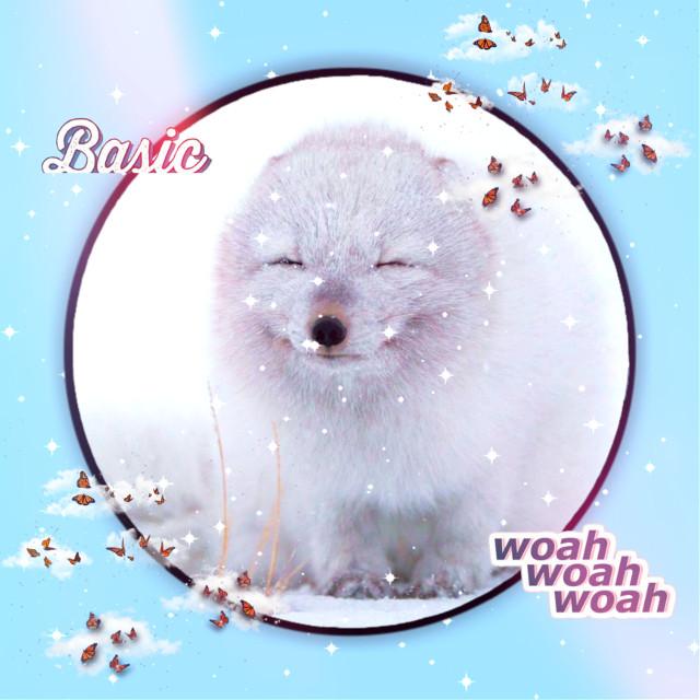 #winter #fox #aesthetic #animal #white #blue #snow #cute