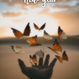 fyp voteme happynearyears staysafe butterflies freetoedit ircinmyhand inmyhand