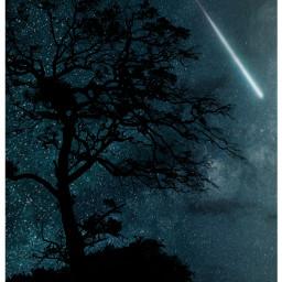 treesilhouettes nightskyremix nighsky stars starrynights night nature shootingstar freetoedit