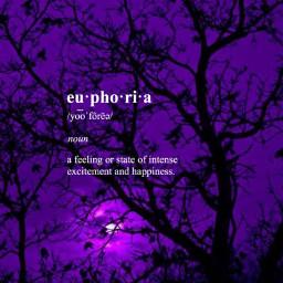 euphoria freetoedit