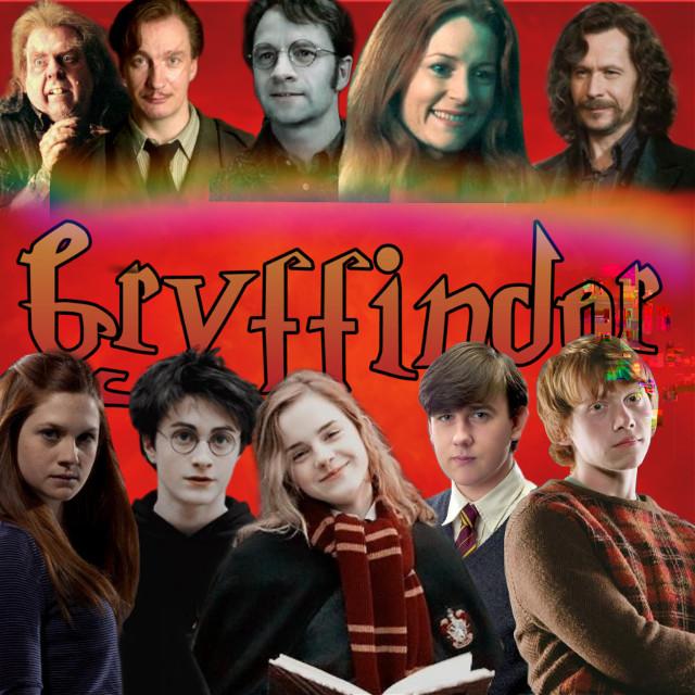 #gryffindorhouse #gryffindor #hogwart #gryffindorpride #hp #harrypotter #harrypotterworld #ronweasley #hermionegranger #nevillelongbottom #ginnyweasley #peterpettigrew #remuslupin #siriusblack #jamespotter #lilypotter