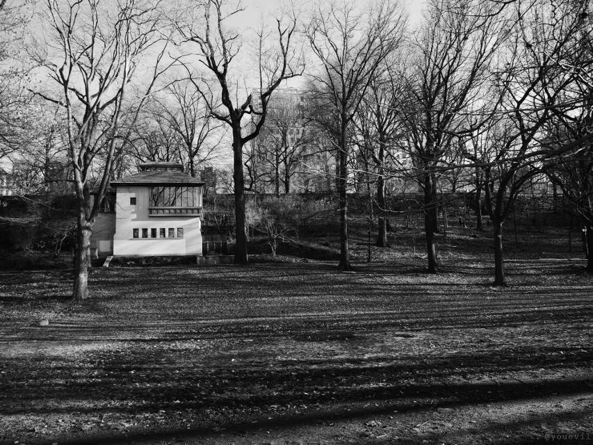 #blackandwhite#rulesofthirds#myphoto#house#house#forest#trees#city#purephotography#classic#blackandwhitephotography.