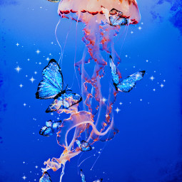 freetoedit butterflies jellyfish underwater ocean