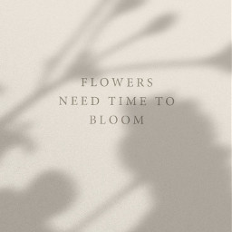 freetoedit quote note pinterest aesthetic