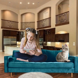 home livingroom homesweethome💜 cutecat happy freetoedit homesweethome irccomfysofa comfysofa