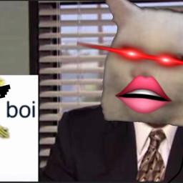 birthday meme freetoedit