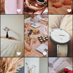 freetoedit collage collageart collageframes collageoftheday favorite favorites gallery photogallery beige aesthetic