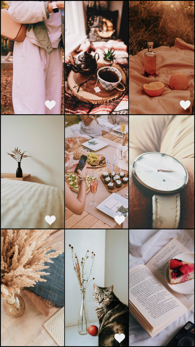 #freetoedit #collage #collageart #collageframes #collageoftheday #favorite #favorites #gallery #photogallery #beige #aesthetic