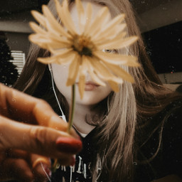 flower girl hand longhair holdingaflower hoodie female effect earbuds oldeffect sunflowers freetoedit