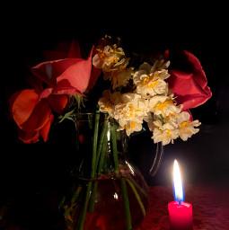 freetoedit candle roses evening