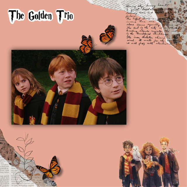 #thegoldentrio #hogwarts #slytherin #hufflepuff #gryffindor #ravenclaw #harrypotter #hermionegranger #ronweasley  🧡🤎❤🧡🤎❤🧡🤎❤🧡🤎❤🧡🤎❤🧡🤎❤