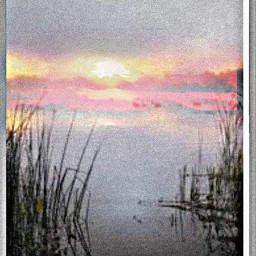 grass swamp fog water sunset freetoedit srchappymoment happymoment