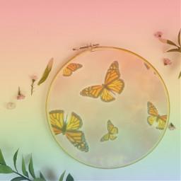 butterflys digitalart background hashtag fotoedit photoediting freetoedit remixit